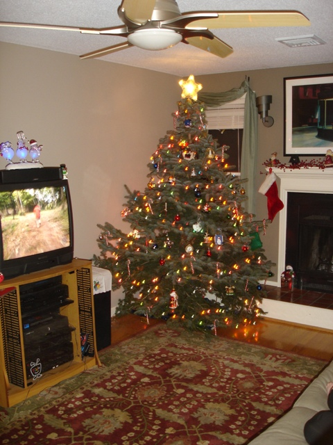 Our First Real X-Mas Tree