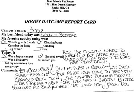 Sable's Report Card Front